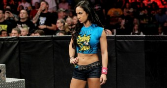 AJ Lee vs Natalya