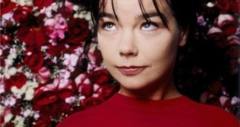 Sexy Björk