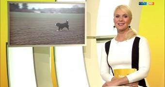Anja Petzold - schönes deutsches Fernsehen