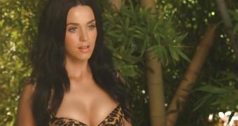 Katy Perry Makes My Dick Roar