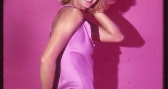 Randi Oakes - Pink LIngerie