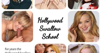 Hollywood Swallow School - all lessons