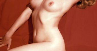 Femme de Playboy