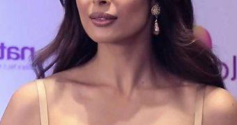 Malaika Arora- Sexy Busty Indian MILF Celeb Sizzles in Hot Dress