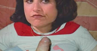 Julia Louise Dreyfuss - Elaine Bennis
